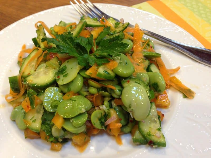 Fava Bean Salad |Tri Holistic Nutrition