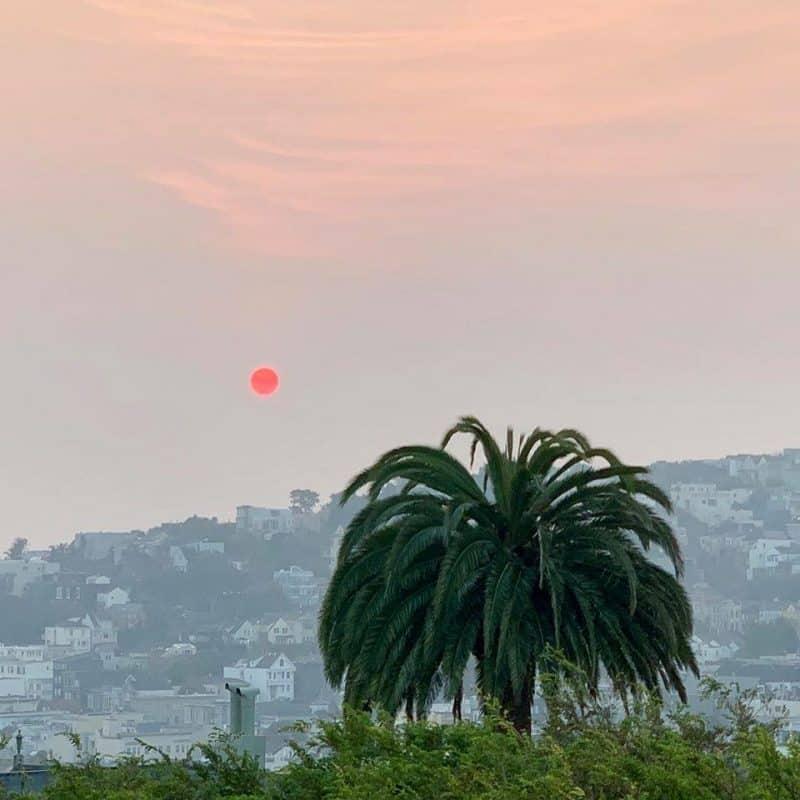 San Francisco - November 2018 Fire | Tri Holistic Nutrition \ Photo by E. Goei
